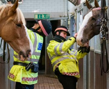 Police officers with horses
